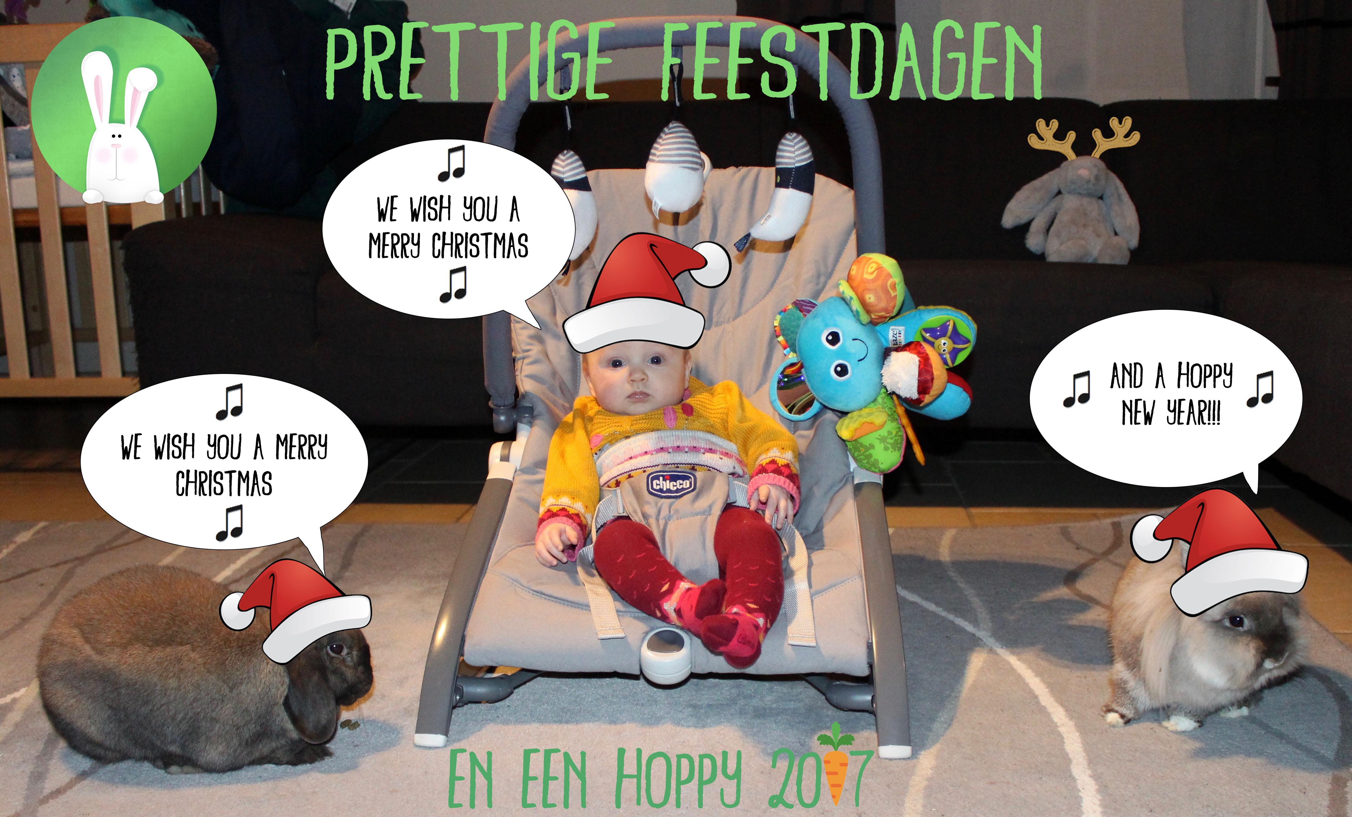 Hoppy 2017 | Konijnenadviesbureau Hopster