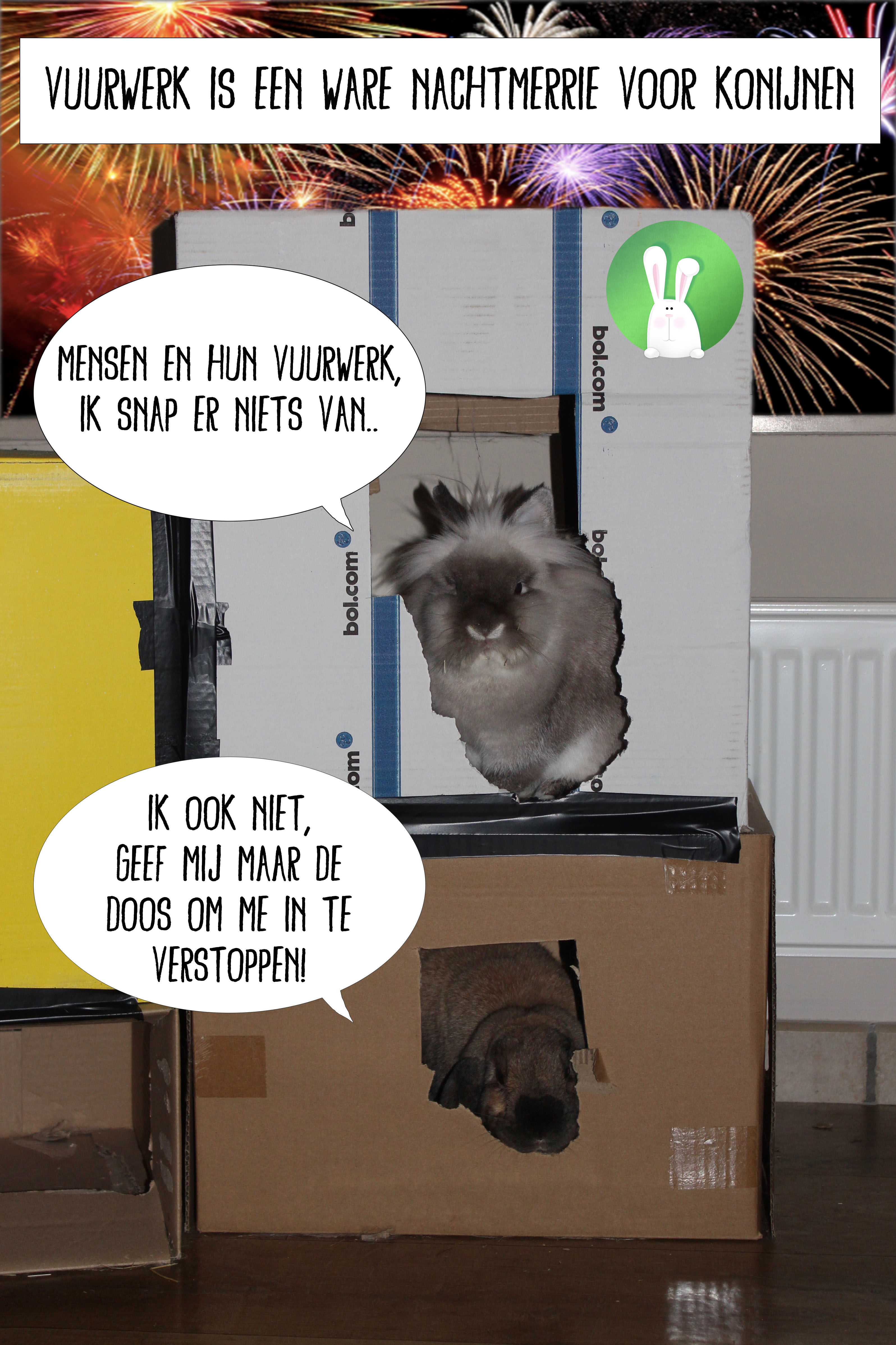 Bereid je konijnen voor op vuurwerk in 5 gemakkelijke stappen | Konijnenadviesbureau Hopster