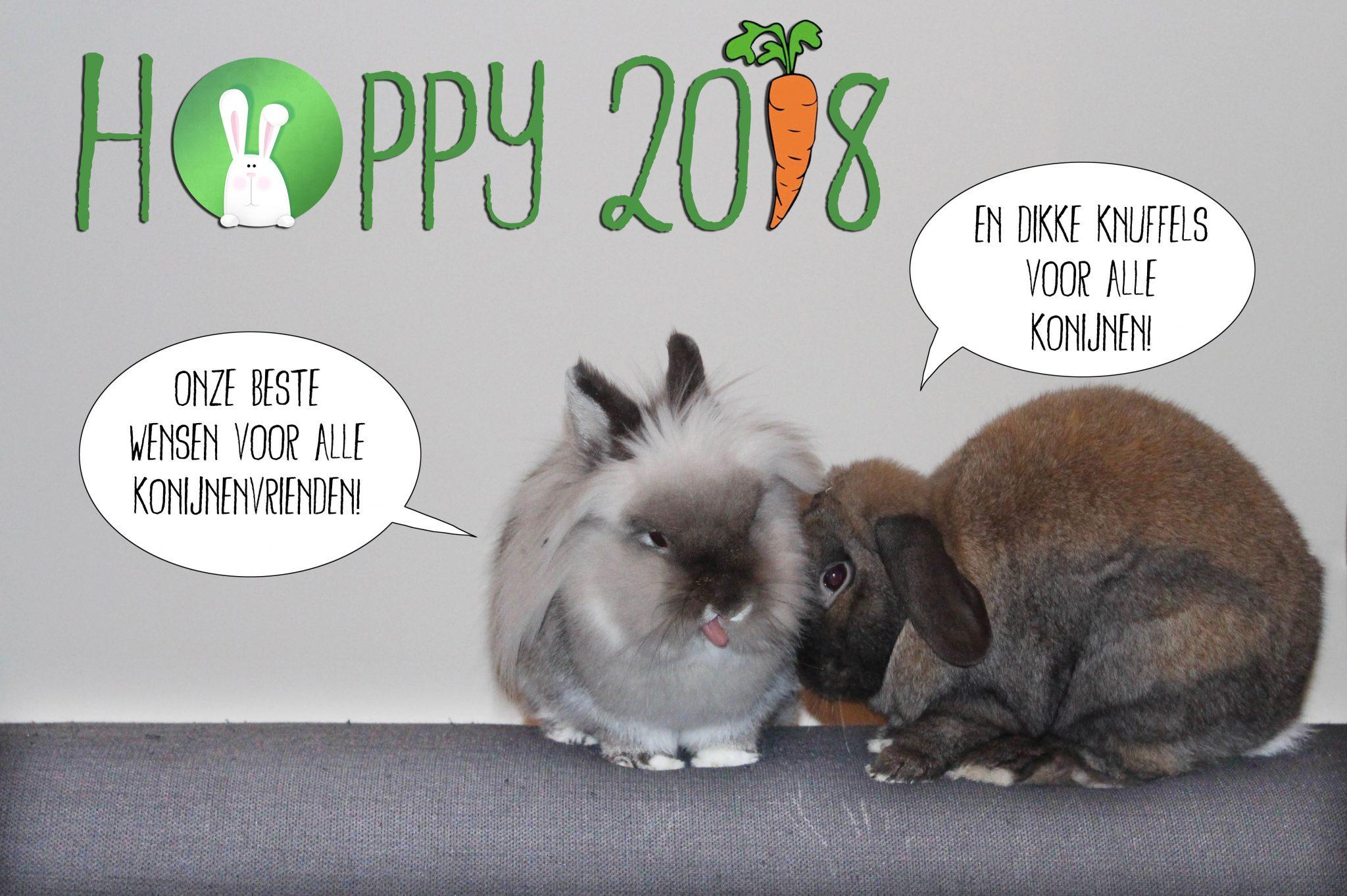 Hoppy 2018   Konijnenadviesbureau Hopster