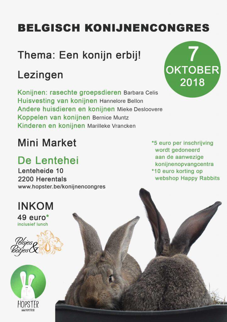 Flyer-Konijnencongres-2018 | Konijnenadviesbureau Hopster