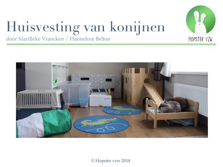 Huisvesting van konijnen_2018 | Konijnenadviesbureau Hopster