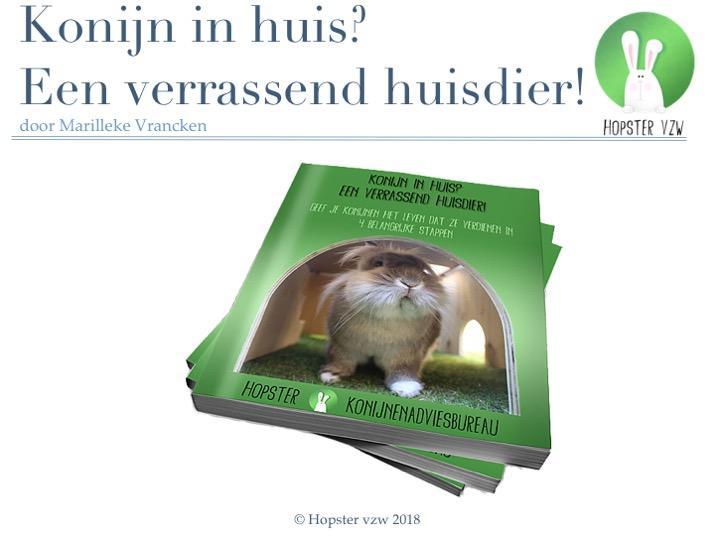 Konijn in huis_ Een verrassend huisdier!_2018 | Konijnenadviesbureau Hopster