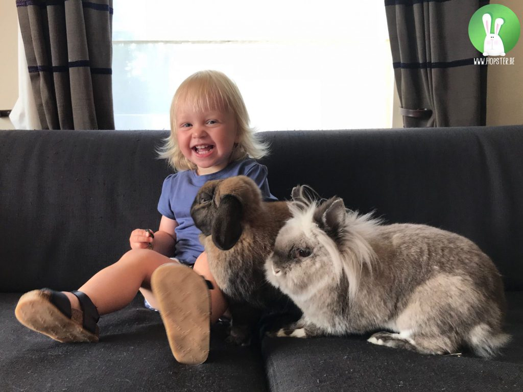 Kinderen en konijnen | Konijnenadviesbureau Hopster