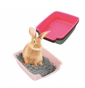Plasbakperikelen bij minder mobiele konijnen | Konijnenadviesbureau Hopster